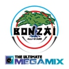 Cover of the album The Ultimate Megamix