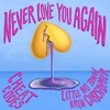 Cover of the album Never Love You Again (with Little Big Town & Bryn Christopher) - Single