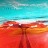 Couverture de l'album The Road