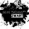 Couverture de l'album Zwart - Single