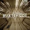 Couverture de l'album Buxtehude: Organ Works