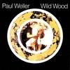 Cover of the album Wild Wood