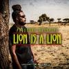 Couverture de l'album Lion Is a Lion - Single