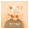 Couverture de l'album Raop