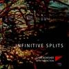 Couverture de l'album Infinitive Splits