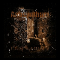 Cover of the track Inanimus