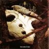 Couverture de l'album From Ashes & Dust