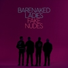 Cover of the album Fake Nudes