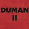 Cover of the album Duman II