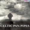 Couverture de l'album Celtic Pan Pipes