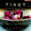 Cover of the album Tibet: Nada Himalaya 2