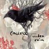 Cover of the album Garden Ruin