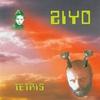 Couverture de l'album Tetris