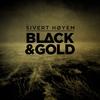 Couverture de l'album Black & Gold - Single