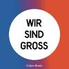 Couverture de l'album Wir sind groß (Calyre Remix) - Single