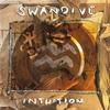 Couverture de l'album Intuition