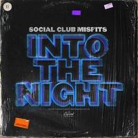Couverture du titre Into the Night