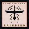 Couverture de l'album Rainbird
