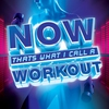 Cover of the album Now That's What I Call a Workout 3