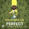 Cover of the album #HashTagHarvest