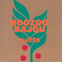 Cover of the track Satta