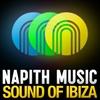 Couverture de l'album Sound of Ibiza