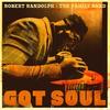 Cover of the album Got Soul