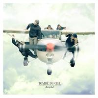 Cover of the track Tombé du ciel