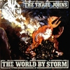 Cover of the album World By Storm