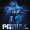 Couverture de l'album Planet Pit