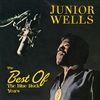 Cover of the album The Best of the Blue Rock Years