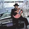 Couverture de l'album Mr. Lucky