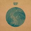 Couverture de l'album Enhed