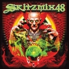 Cover of the album Skitzmix 48 (World Edition) [Mixed by Nick Skitz]