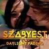 Couverture de l'album Daylight Fading - Single