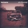 Couverture de l'album Art of Survival