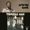 Couverture de l'album Trouble Man