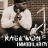 Cover of the album Immobilarity