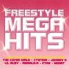 Couverture de l'album Freestyle Mega Hits (Continuous DJ Mix By Vicious Vic)