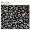 Couverture de l'album New World Ambient, Volume 2