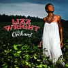 Couverture de l'album The Orchard