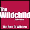 Couverture de l'album Best of Wildtrax