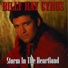 Couverture de l'album Storm in the Heartland