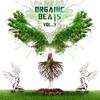 Couverture de l'album Organic Beats Vol. 3