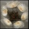 Couverture de l'album Il Tempo Magico di Saturnia Pavonia