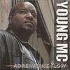 Couverture de l'album Adrenaline Flow