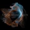 Cover of the album Late Night Tales Presents Sasha: Scene Delete