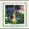 Cover of the album Bandole