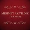Cover of the album Yık Kendini