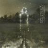 Couverture de l'album Scintilla
